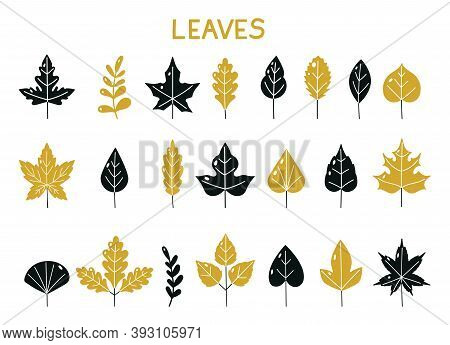 Set Of Silhouettes Of Autumn Leaves. Autumn Leaf Fall. Isolated On White Background. Vector Illustra