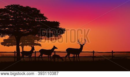 Herd Of Grazing Deer Behind Farm Fence With Trees And Sunset Sky - Eveing Scene Vector Silhouette De