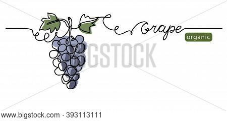 Grape Bunch Vector Illustration. One Continuous Line Drawing Art Illustration With Lettering Organic