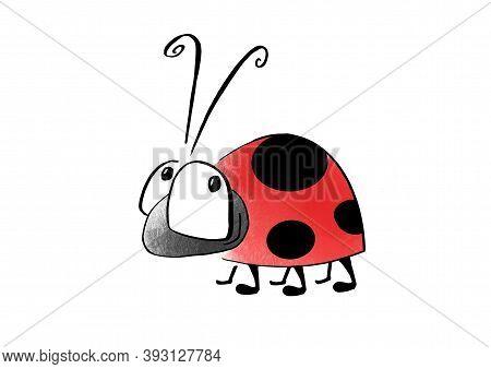 Cartoon Style Animals. Insects. Ladybird Illustration Animal