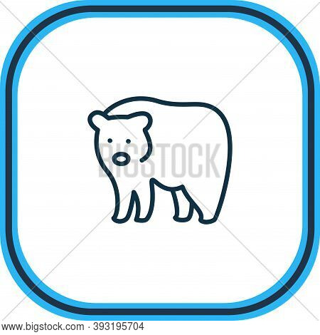 Illustration Of Bear Icon Line. Beautiful Animals Element Also Can Be Used As Grizzly Icon Element.