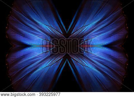 Wings Of A Butterfly Morpho Texture Background. Morpho Butterfly. Copy Space.