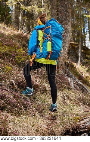 Photo Of Female Traveler Overcomes Up Hill, Treks In Forest, Wears Big Blue Rucksack On Back, Makes