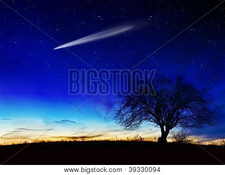 A shooting star going across the starry night