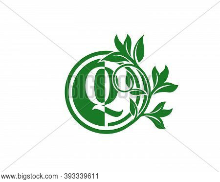 Luxury Circle Q Letter Floral Logo. Nature Q Swirl Logo Icon.