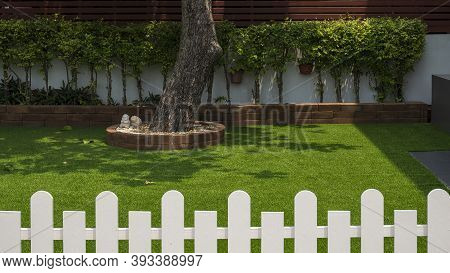 Selective Focus At Large Tree Trunk And Row Of Green Bush Plant On Artificial Turf In Front Yard Of
