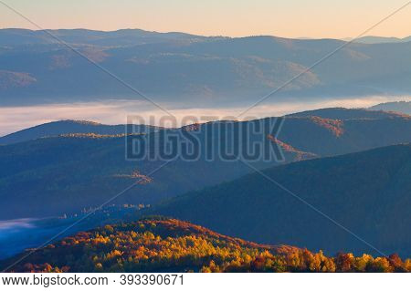 Foggy Autumn Scenery In Mountains At Sunrise. Red And Yellow Foliage On The Trees. Hazy Weather In T