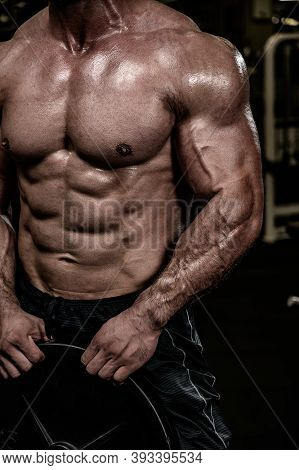 Physique Body Muscle Strong Man Holding Weight Barbell In Sport Gym During Training Workout