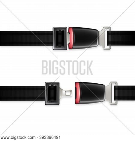 Seat Belt Automobile Life Safety Detail Set Vector