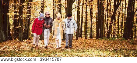 Group Of Senior Friends Walking In Beautiful Colorful Autumn Park. Old Age Persons Talking During Wa