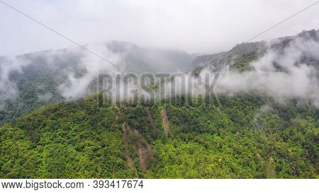 Aerial Drone Of Rainforest On The Mountain Slopes With Clouds. Philippines, Mindanao.