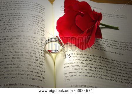 Rings And Rose