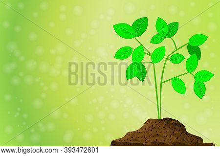 Plant Grows From A Pile Of Dirt On Green Background With Blurred Bokeh. Seedling In Soil Pile. Natur