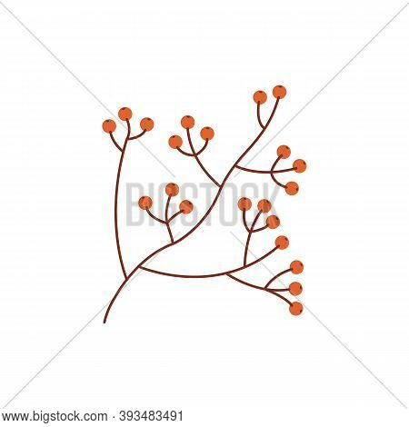 Wild Berries In Autumn Season Flat Vector Abstract Element. Nature Generosity. Reaping Harvest Rgb C