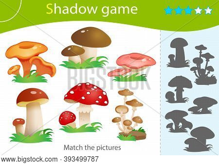 Shadow Game For Kids. Match The Right Shadow. Color Image Of Forest Mushrooms. Fly Agaric, Chanterel