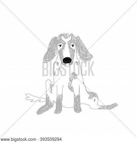 Doodle Dog With Long Ears, Large Black Nose. The Hand-drawn Spaniel Sits With Its Legs Apart And Loo
