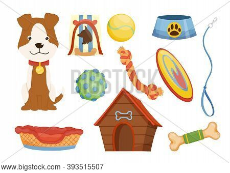 Collection Of Pet Shop Icons. Dog Leash. Pet Care Supply Accessories And Decorative Products. Vector