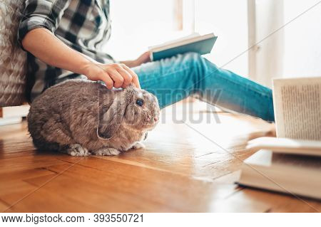 A Woman Is Sitting On The Floor, Reading A Book And Petting A Rabbit. Side View. Concept Of Reading