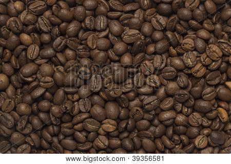 Coffee beans texture