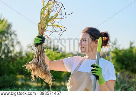 Smiling Woman Farmer Gardener Holding Fresh Dug Garlic Plant In Hand, Harvest Garlic Summer Sunny Ve