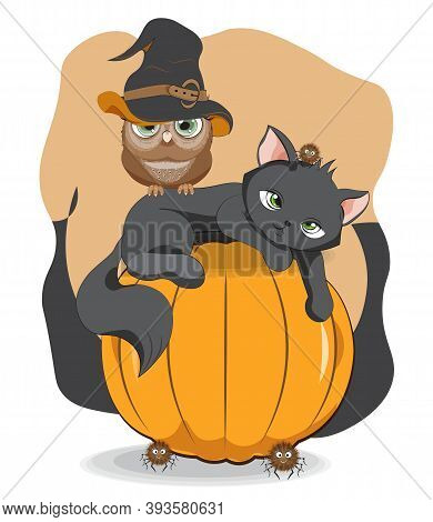 Halloween Wink Black Cat. Owl In Witch Hat And Spider On Pumpkin, Picture In Hand Drawing Cartoon St
