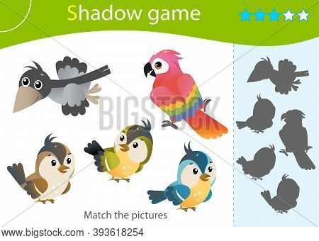 Shadow Game For Kids. Match The Right Shadow. Color Images Of Cartoon Birds. Crow, Parrot, Sparrow,