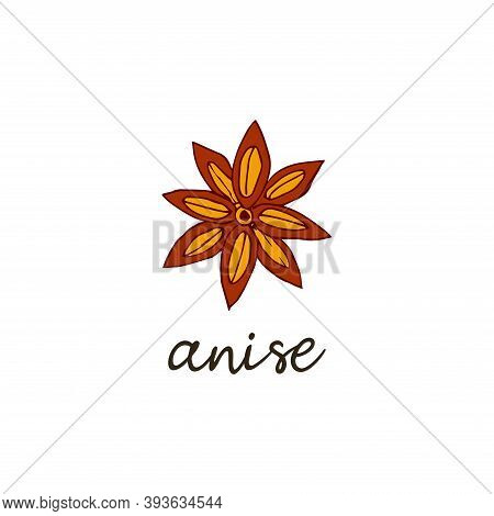 Star Anise Spice. Isolated Vector Hand Drawn Food Illustration With The Inscription. Aromatic Condim