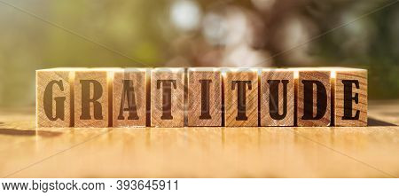Gratitude Word Written On Wood Block. Gratitude Text On Wooden Table For Your Desing, Concept.