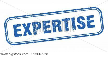 Expertise Stamp. Expertise Square Grunge Blue Sign. Expertise Tag