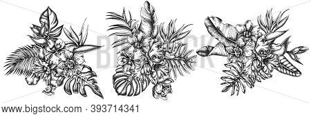 Flower Bouquet Of Black And White Monstera, Banana Palm Leaves, Strelitzia, Heliconia, Tropical Palm