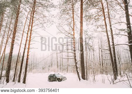 Gomel, Belarus - January 28, 2019: Renault Duster Or Dacia Duster Suv Parked In Snowdrift. Winter Sn