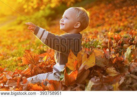 Warm Moments Of Autumn. Toddler Boy Blue Eyes Enjoy Autumn. Small Baby Toddler On Sunny Autumn Day.