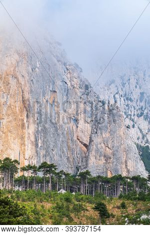 Detail Of A Steep Rocky Wall With Green Fir Trees In The Mountains. Steep Stones Of Big Rocky Mounta