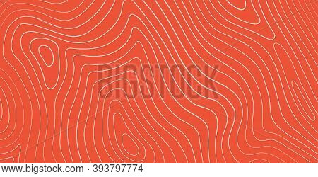 Salmon Fillet Texture, Fish Pattern. Vector Background With Stripes Salmon