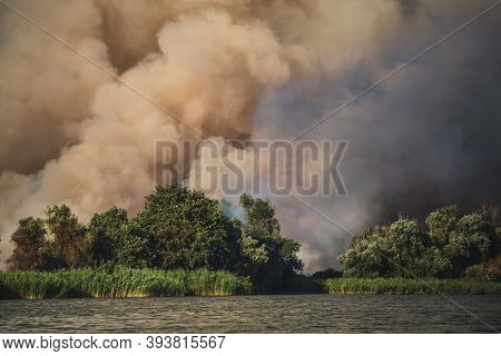 Large Clouds Of Smoke, Wildfire, Natural Disaster, Forest Fires, Ecological Disaster.