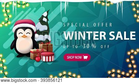 Special Offer, Winter Sale, Up To 30 Off, Green Discount Banner With Icicles, Garland, Pink Button,
