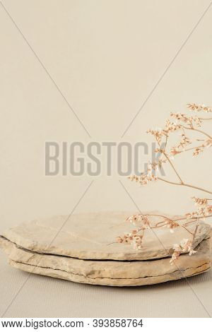 Background For Cosmetic Products Of Natural Beige Color. Stone Podium And Dry Flower On A White Back