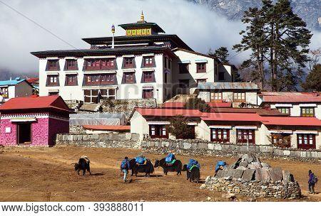 Tengboche Monastery, The Best Monastery In Khumbu Valley And Yaks, Trek To Everest Base Camp, Sagarm
