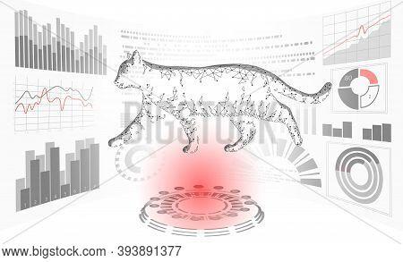 Cat Silhouette Veterinary Clinic Banner Template. Analysis Stethoscope Virus Infection. Vet Care Med