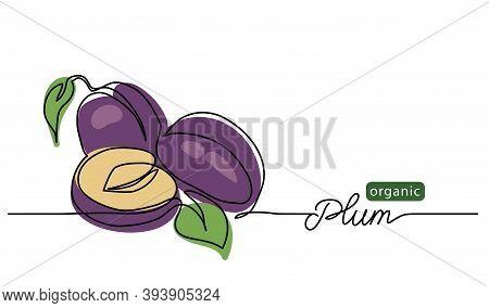 Plum Vector Illustration. One Line Drawing Art Illustration With Lettering Organic Plum.