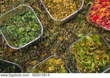 Mix Of Healing Herbs, Herbal Medicine