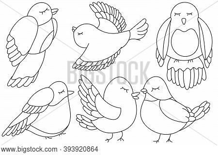 Simple Birds Coloring Page Outline Drawing. Kids Coloring Book Page. Outline Vector Illustration. Bi