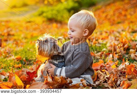 Toddler Boy Enjoy Autumn With Dog Friend. Small Baby Toddler On Sunny Autumn Day Walk With Dog. Warm