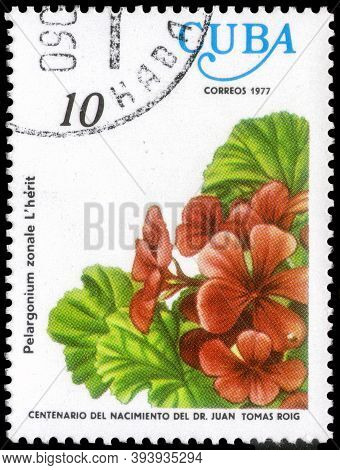 Saint Petersburg, Russia - September 18, 2020: Postage Stamp Issued In The Cuba The Image Of The Pel