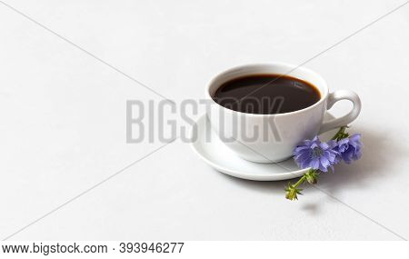 Chicory Coffee Drink And Blue Chicory Flower On White Background. Decaffeinated Coffee. Copy Space.