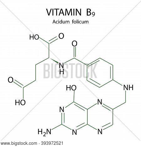 Vitamin B9 Formula. Molecular Structure. Isolated Vector Icon. Stock Image.