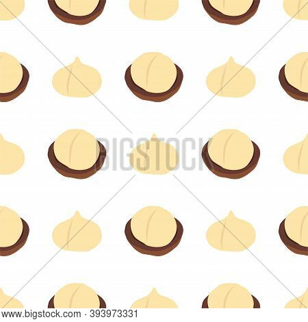 Macadamia Nut. Cosmetic And Medical Plant. Vector Seamless Pattern Eps.