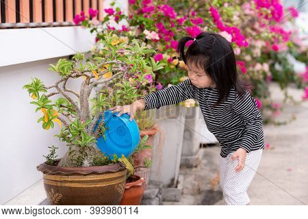 A Hardworking Asian Girl Watered The Plants In Front Of The House With A Blue Bowl Plastic. Cute Chi