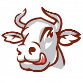 Head of Licking Cow. Stylized Drawing. Vector Illustration poster