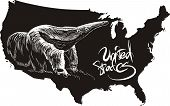 Anteater and U.S. outline map. Black and white vector illustration. poster